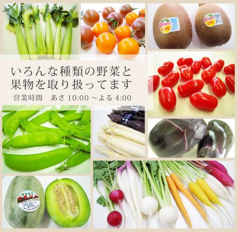 いろんな種類の野菜と果物を取り扱ってます